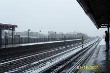 2 snow tracks.JPG